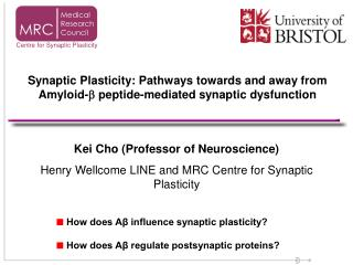 Kei Cho (Professor of Neuroscience) Henry Wellcome LINE and MRC Centre for Synaptic Plasticity
