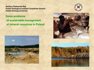 Barbara Radwanek-Bąk Polish Geological Institute -Carpathian Branch Polias Geological Survey