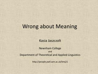 Wrong about Meaning