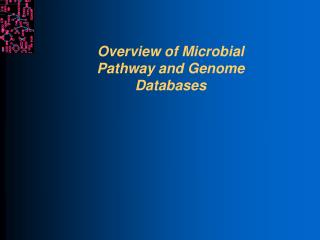 Overview of Microbial  Pathway and Genome Databases