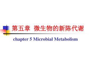 第五章 微生物的新陈代谢