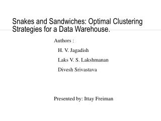 Snakes and Sandwiches: Optimal Clustering Strategies for a Data Warehouse.