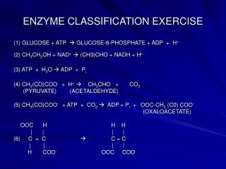 ENZYME CLASSIFICATION EXERCISE