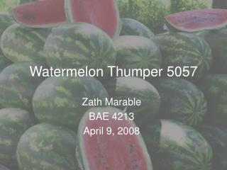 Watermelon Thumper 5057