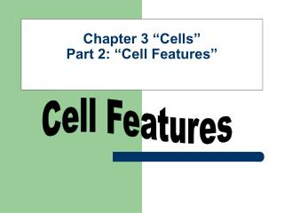 "Chapter 3 ""Cells"" Part 2: ""Cell Features"""