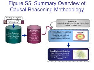 Figure S5: Summary Overview of Causal Reasoning Methodology