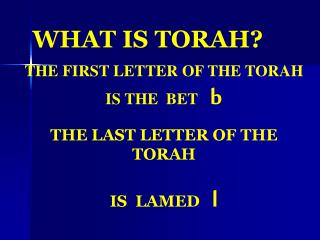 WHAT IS TORAH?