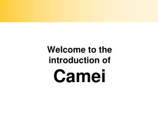 Welcome to the introduction of  Camei