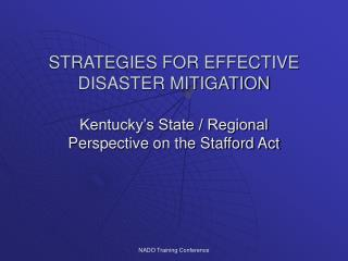 STRATEGIES FOR EFFECTIVE DISASTER MITIGATION