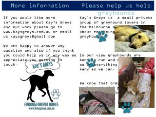Please help us help greyhounds