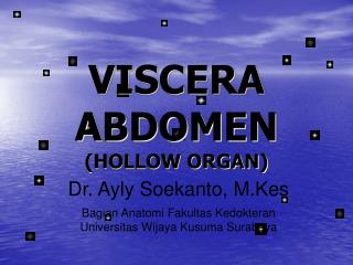 VISCERA ABDOMEN (HOLLOW ORGAN)