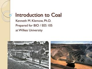 Introduction to Coal