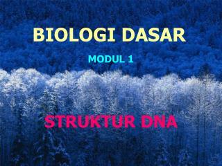 MODUL 1 STRUKTUR DNA