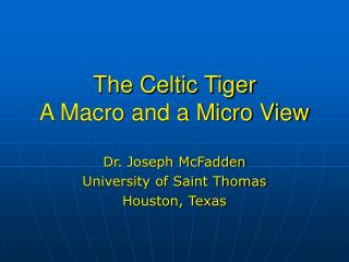 The Celtic Tiger A Macro and a Micro View