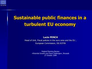 Sustainable public finances in a turbulent EU economy