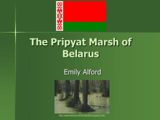 The Pripyat Marsh of Belarus