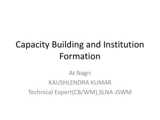 Capacity Building and Institution Formation