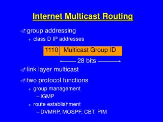 Internet Multicast Routing