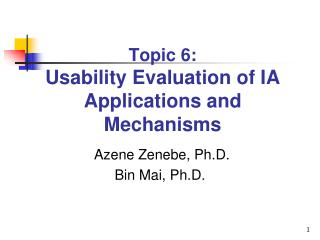 Topic 6: Usability Evaluation of IA Applications and Mechanisms
