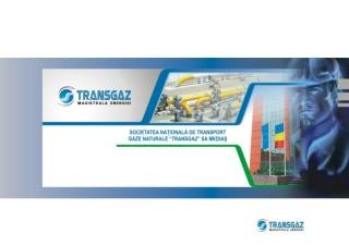 TRANSGAZ SA –  cadru legal