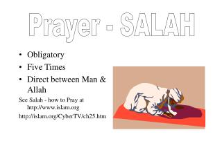 Obligatory Five Times Direct between Man & Allah See Salah - how to Pray at islam