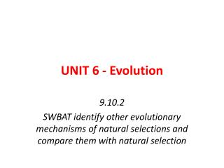 UNIT 6 - Evolution