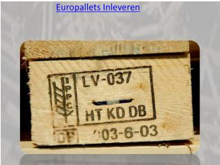 Europallets Inleveren