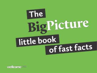 The  Big Picture  little book of fast facts