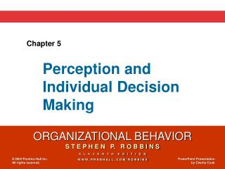 Perception and  Individual Decision Making