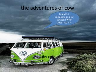 the adventures of cow