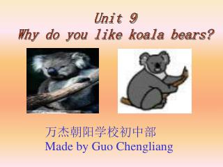 Unit 9 Why do you like koala bears?
