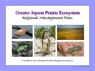 Greater Jepson Prairie Ecosystem Regional Management Plan