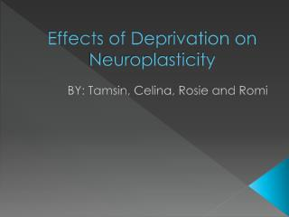 Effects of Deprivation on Neuroplasticity