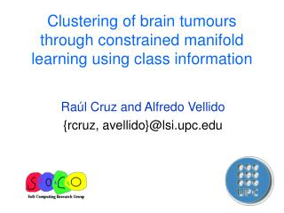 Clustering of brain tumours through constrained manifold learning using class information