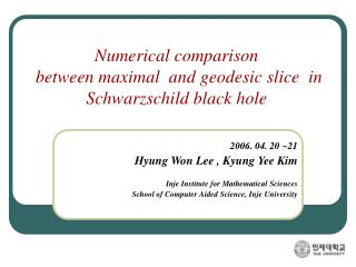 Numerical comparison   between maximal  and geodesic slice  in  Schwarzschild black hole