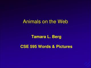 Animals on the Web