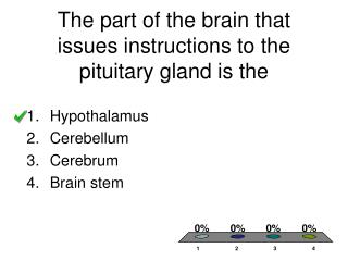 The part of the brain that issues instructions to the pituitary gland is the