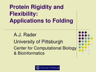 Protein Rigidity and Flexibility: Applications to Folding