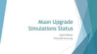 Muon  Upgrade Simulations Status
