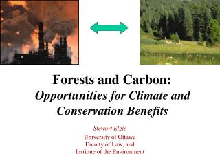 Forests and Carbon: Opportunities  for Climate and Conservation Benefits