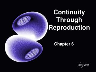 Continuity Through Reproduction