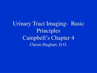 Urinary Tract Imaging-  Basic Principles Campbell's Chapter 4