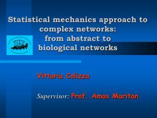 Statistical mechanics approach to complex networks:  from abstract to