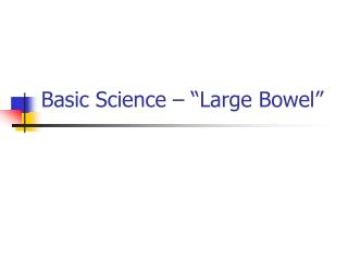 "Basic Science – ""Large Bowel"""