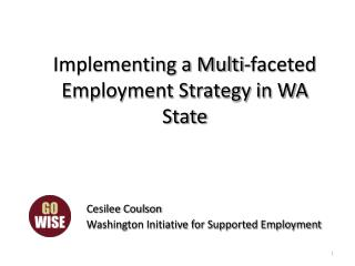 Implementing a Multi-faceted Employment Strategy in WA State