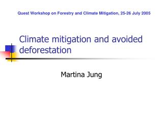 Climate mitigation and avoided deforestation
