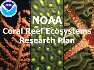 NOAA  Coral Reef Ecosystems Research Plan