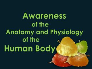 Awareness  			of the Anatomy  and Physiology  		of  the  Human  Body