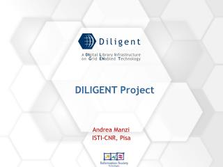 DILIGENT Project