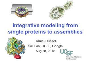 Integrative modeling from single proteins to assemblies